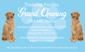 Dog-Obedience-Grand-Opening